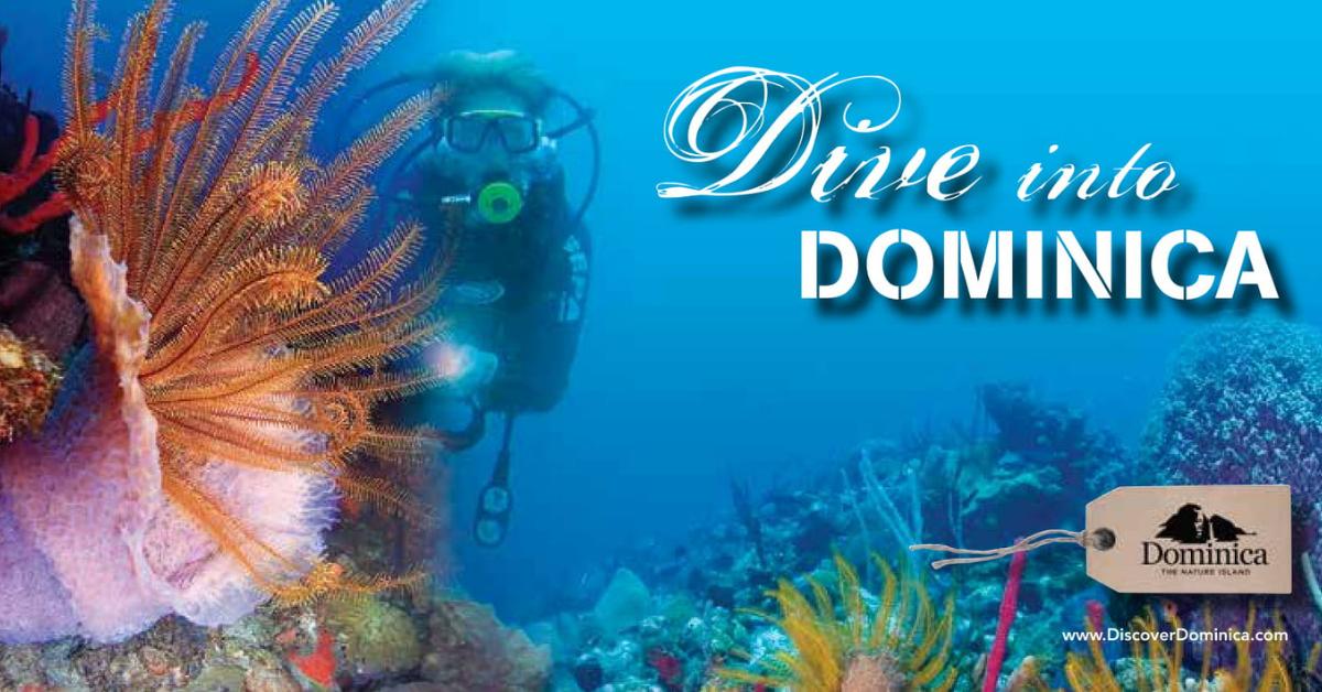 dominica header